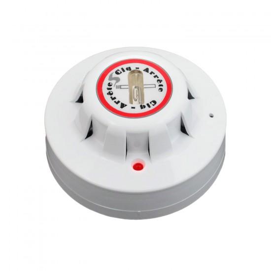 Flame detector CSA-FUV